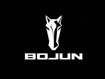 品牌设计logo设计、vi设计铂骏重卡品牌设计方案