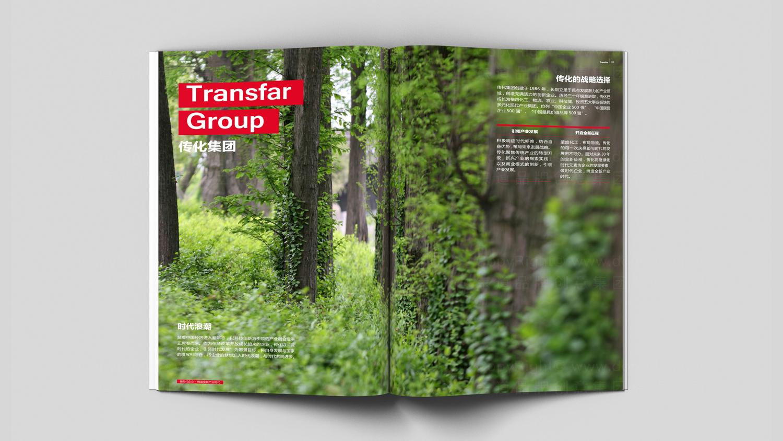 视觉传达传化画册设计应用场景