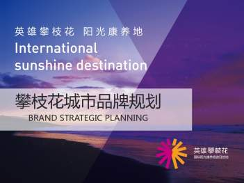 品牌战略&企业文化品牌管理规划攀枝花品牌战略&企业文化方案