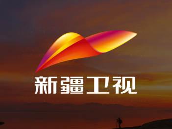 品牌设计LOGO&VI设计新疆卫视品牌设计方案