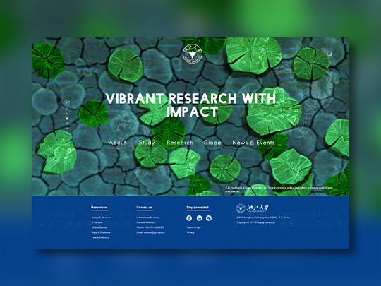 英文版网站设计