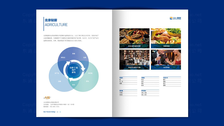 视觉传达海尔画册设计应用场景_6