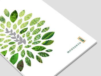 生物研究公司画册设计