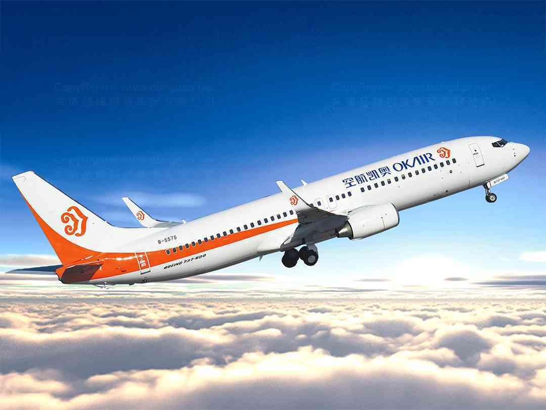 品牌设计VI设计奥凯航空品牌设计方案