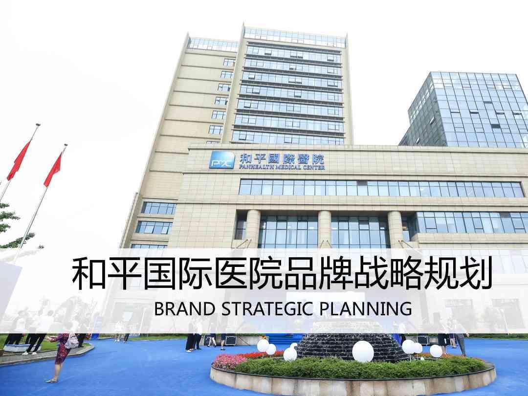品牌战略&企业文化品牌管理规划和平国际医院品牌战略&企业文化方案