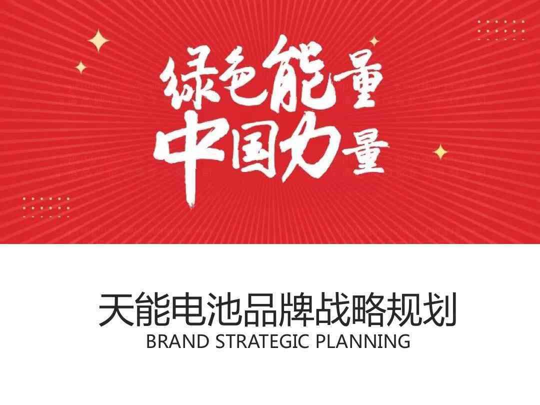 品牌战略&企业文化品牌管理规划天能电池品牌战略&企业文化方案