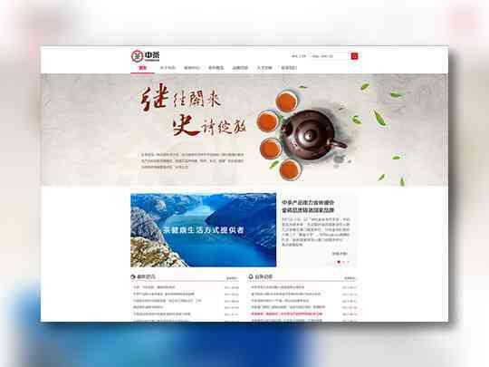 东道数字网站设计中粮东道数字方案